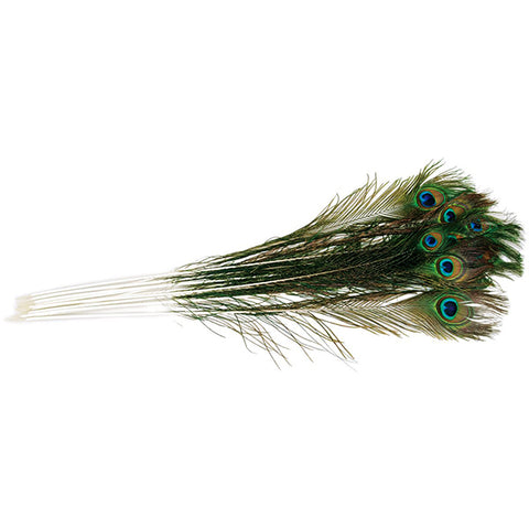 Natural Peacock Feather Teaser Cat Toy