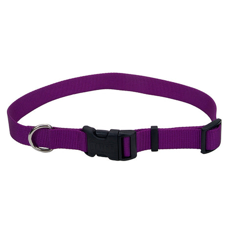 Adjustable Nylon Collar with Tuff Buckle Purple