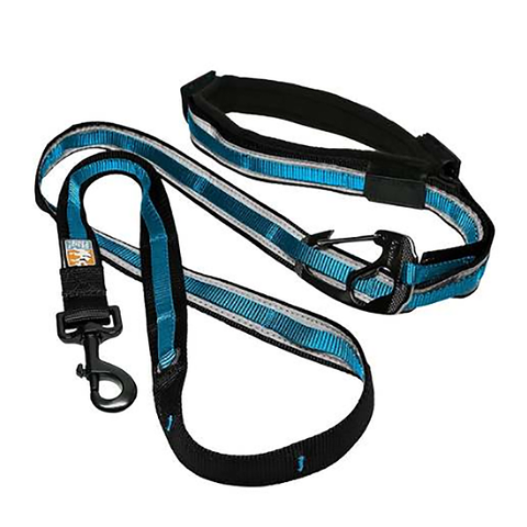 Quantum 6-in-1 Dog Leash Reflective Blue