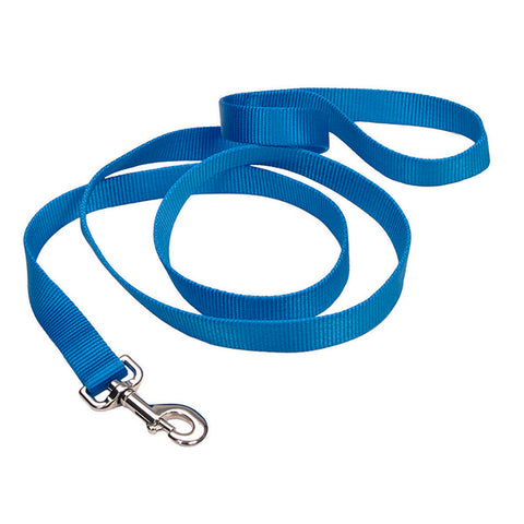 Single-Ply Nylon Leash Blue Lagoon