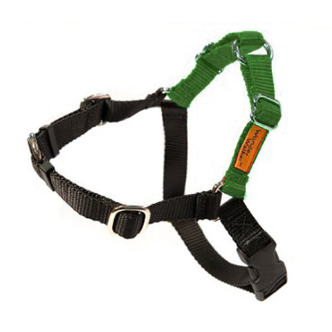 Wonder Walker No-Pull Dog Body Halter Green