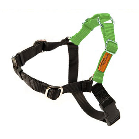 Wonder Walker No-Pull Dog Body Halter Light Green