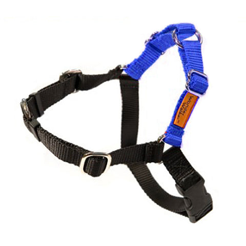 Wonder Walker No-Pull Dog Body Halter Royal Blue