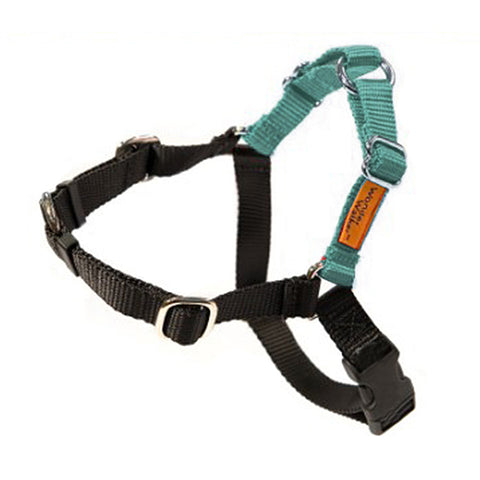 Wonder Walker No-Pull Dog Body Halter Teal