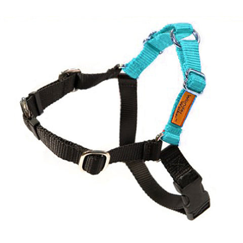 Wonder Walker No-Pull Dog Body Halter Turquoise
