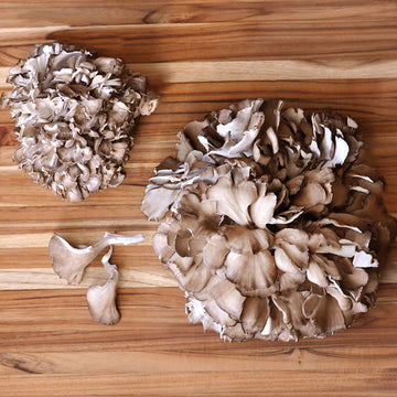 1 Pound Fresh Hen Of The Woods/S&H Included