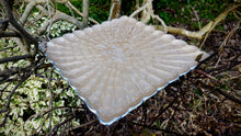 Square Scalloped Platter - Simply Roka