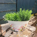 Metal Trough Planter - Tulip Flower - Simply Roka