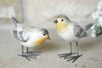 Robin Bird Ornaments - set of 2 - Simply Roka