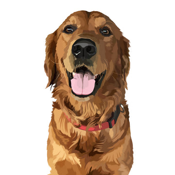 Digital Art File Of Pet