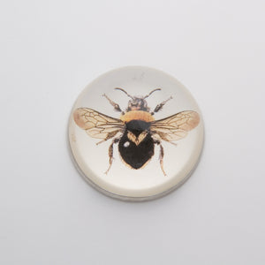 Black and Orange Bee - Crystal Dome Decoupaged Paperweight
