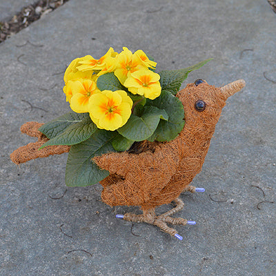 a bird coco fiber topiary planter. The plant goes in the back of the bird in a small pouch