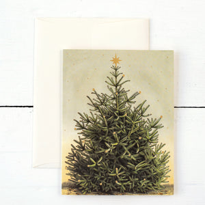 Christmas Tree Cards  Boxed Set