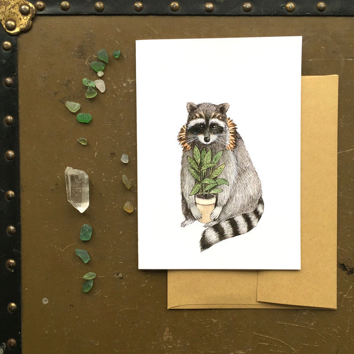 Raccoon - Critters and Plants
