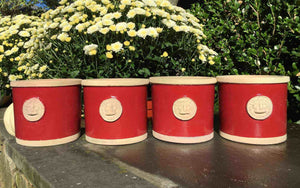 Botanical Collection Round Red Herb Pots displayed with flowers