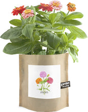 Showing the garden in a bag for MOM with the flowers growing out of the bag.