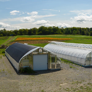 Greenhouses with Rows of Growing Calendula in Background
