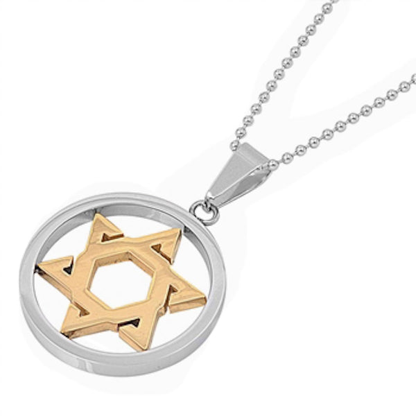 Stainless Steel Yellow Plated Star of David Necklace