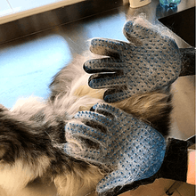 blue-pet-grooming-glove- removing-loose-pet-hair-from-pets-body