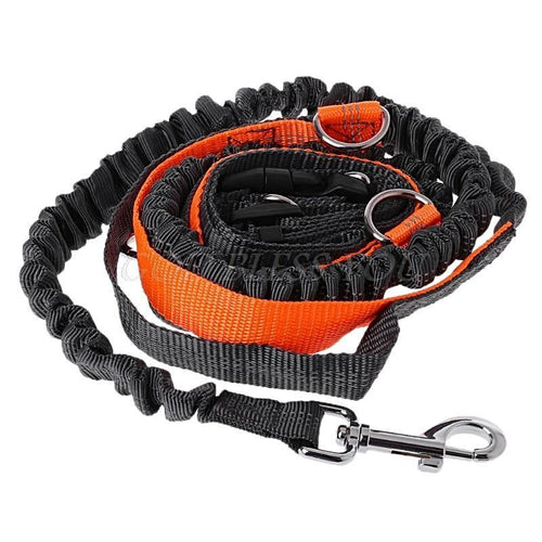 Hands Free Dog Leash - mypetsdayoff
