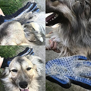Best Pet Grooming Glove For Dogs and Cats 2018 - Mypetsdayoff.com