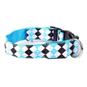 Led Dog Collar - mypetsdayoff