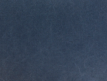 Giant-COTTON CANVAS,INDIGO