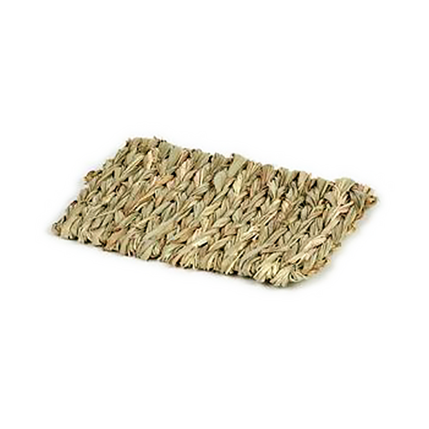 Natural Grass Chew Mat - Small 6""