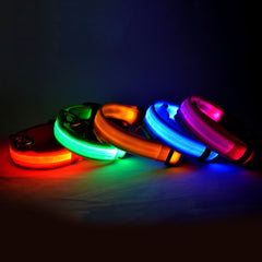 6 Colors LED Dog collar - Adjustable Nylon size S to XL