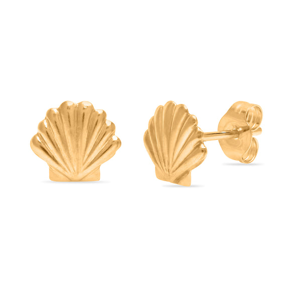 Little Shell Studs