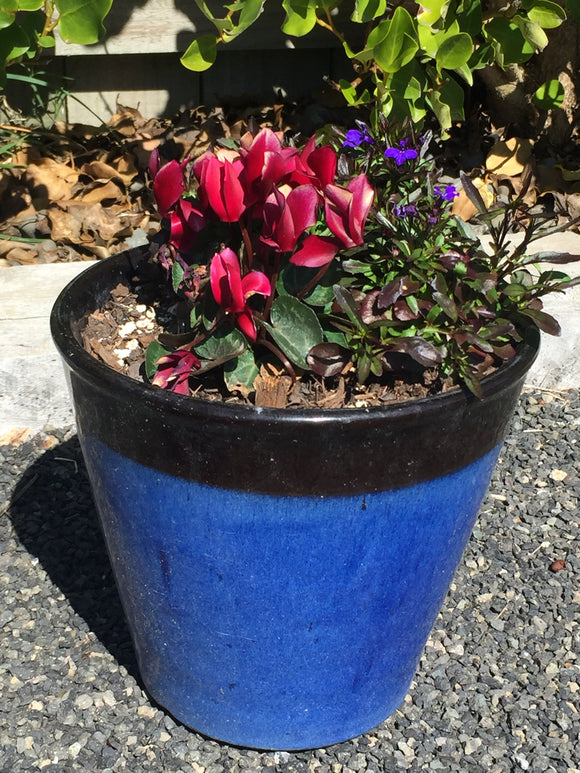 Medium sized Pot With Flowers - ref: (7213)