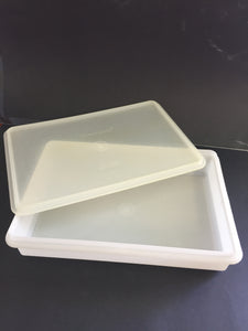 Tupperware Oblong Slice Container (7706)