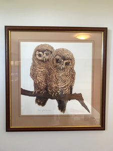 Owls by Ted Chambers (7425)