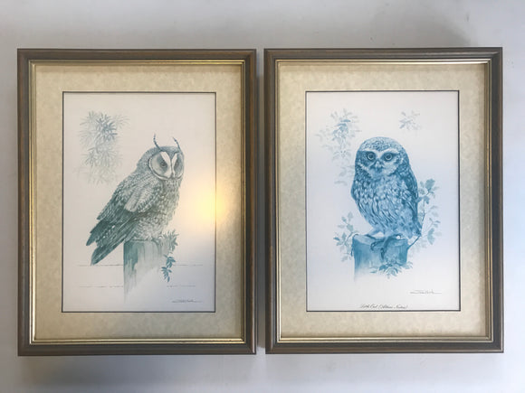 2 x Framed Vintage Owl Prints (7471)