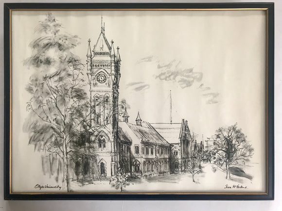 Otago University Ink Drawing (7482)