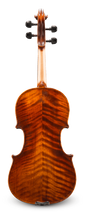 Andreas Eastman VA305 Intermediate Viola - Back
