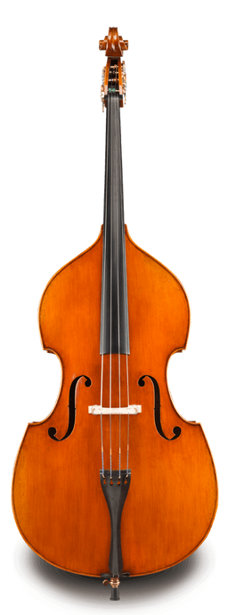 Raul Emiliani VB928 Double Bass