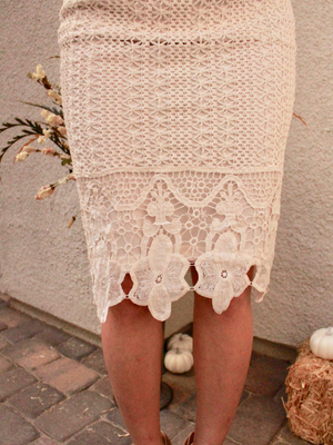 Leah Lace Pencil Skirt