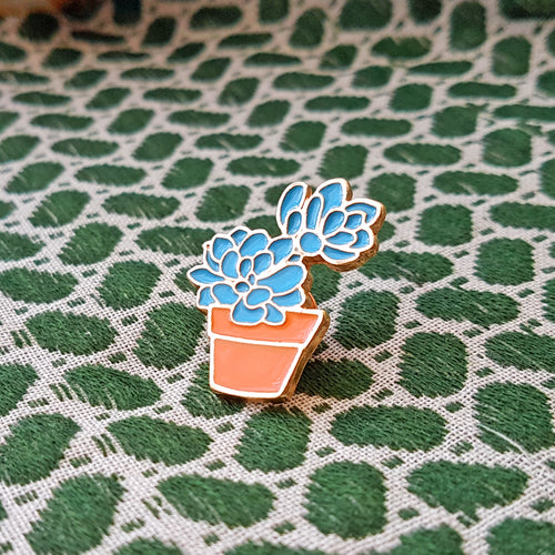 Super Cute Echeveria Succulent Pin