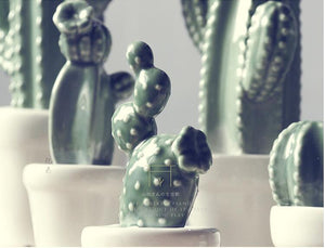 Hand-Crafted Ceramic Cactus Ornaments