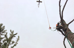 HELICOPTER  TREEWORK 101