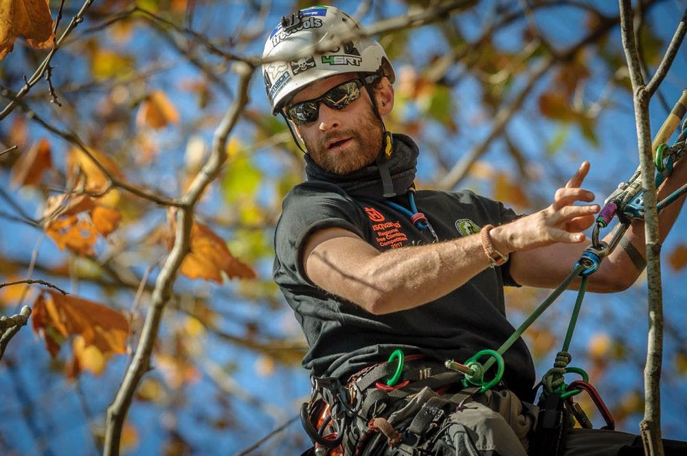 Sam Turner - Waitakere Tree Services