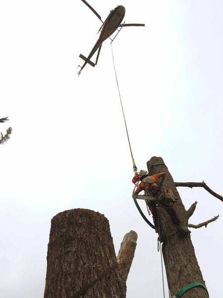 Helicopter Tree Removal