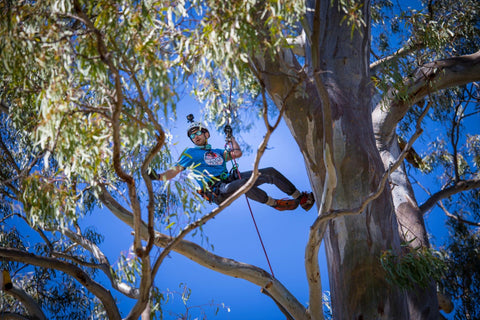 Sam Turner, Arborist taking a big swing at the Red Bull climbing competition