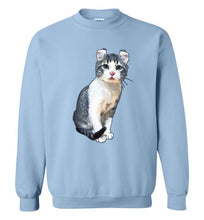 Curly Snow Cat Unisex Sweatshirt S-2XL