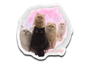 12catslady Sticker Decal-Sticker-Kucicat