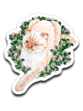 Coco Cat Decals Watercolor Style Sticker