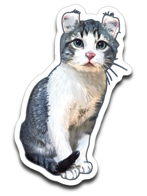 Curly Snow Cat Sticker Decals-Sticker-Kucicat