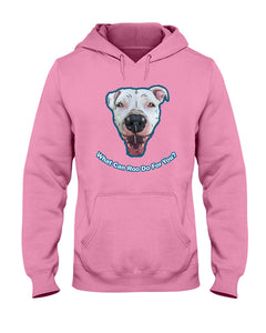 Mayor Roo @ataleof2pitties Hoodie