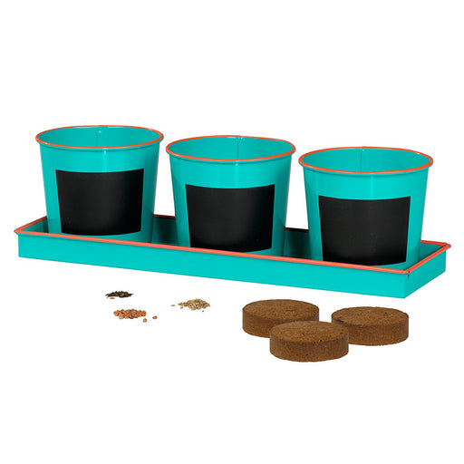 Thoughtful Little Gardener Plant Pots and Seed Set - Green